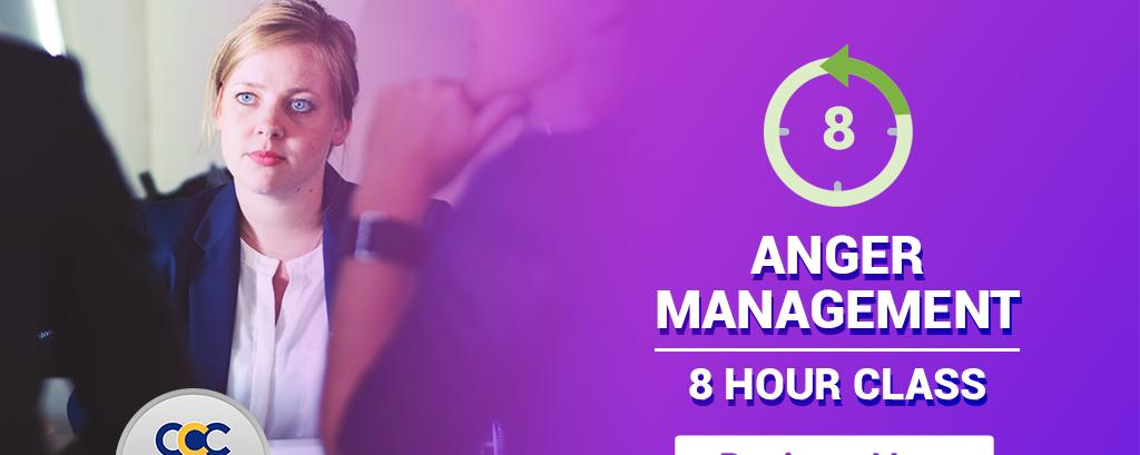 8 Hour Anger Management Class Online